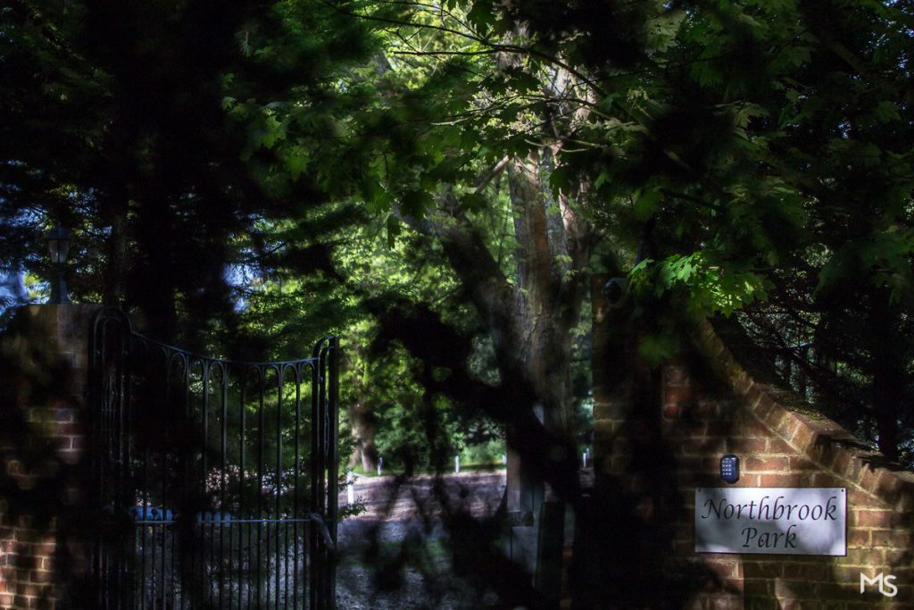 Northbrook_Park_photographer_Rhea_Amar - 2_IMG_9420.jpg